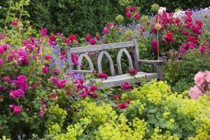 zahrada 1 promo